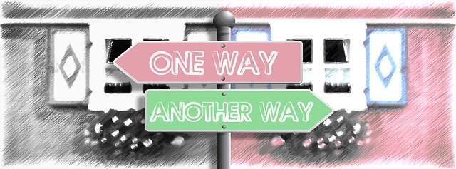Which Way Do You Want To Go?